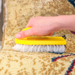 cleaned carpets service