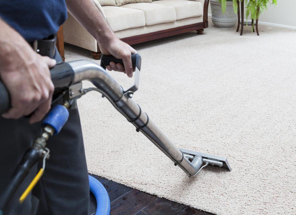 carpet cleaning hamilton