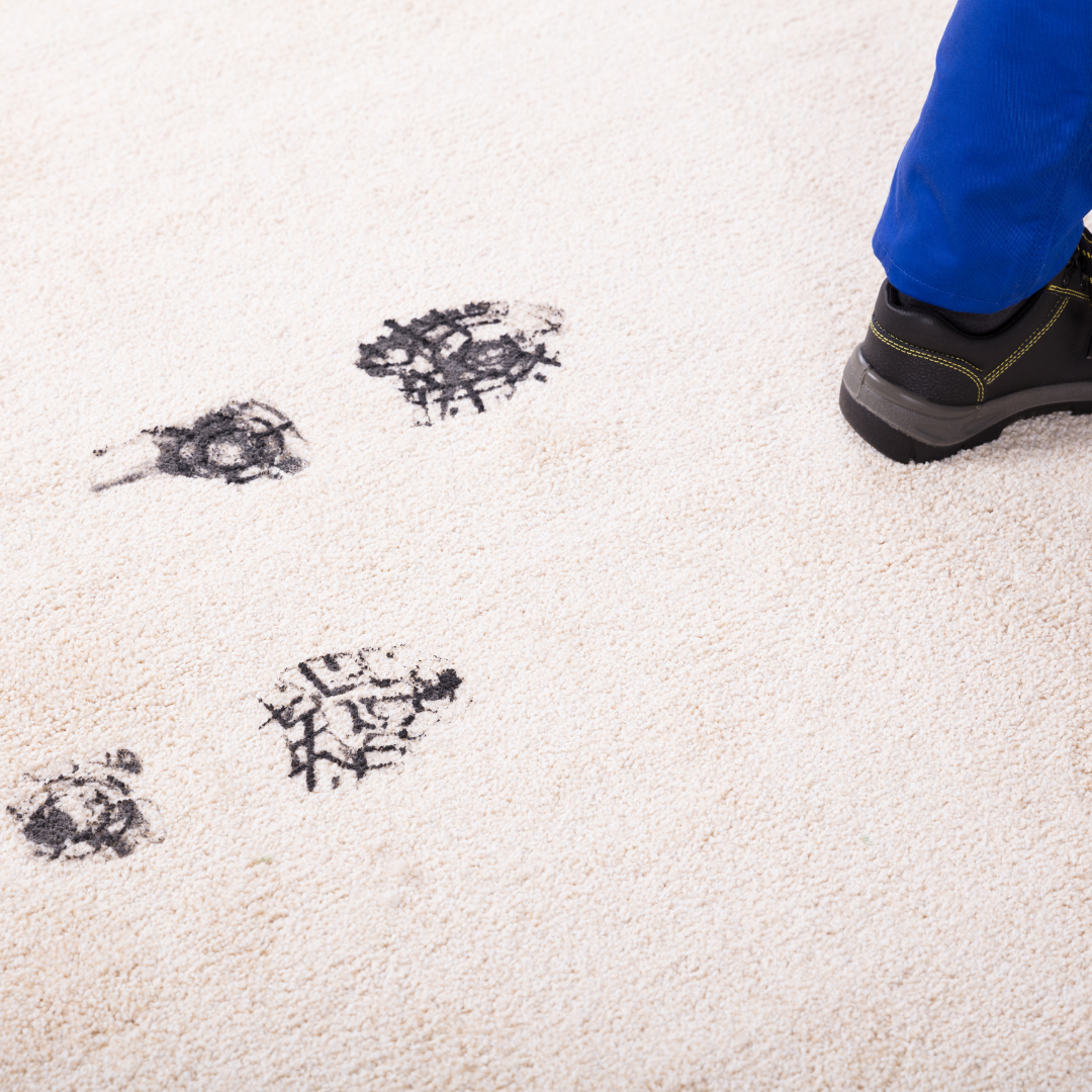 how to clean mud out of carpet