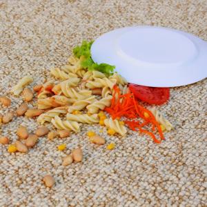 food on carpet